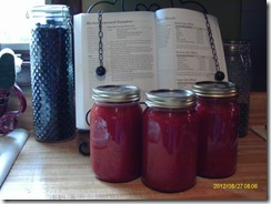 My three jars of spaghetti sauce. (And the awesome cookbook holder from my mother-in-law!)