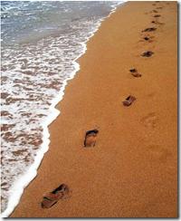 footprints4
